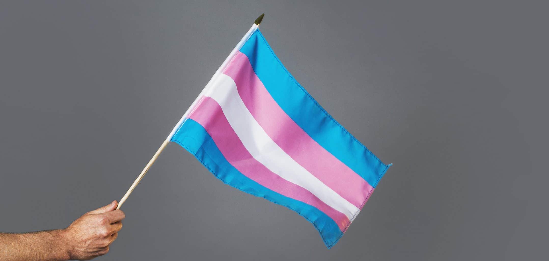 a person waving a transgender pride flag
