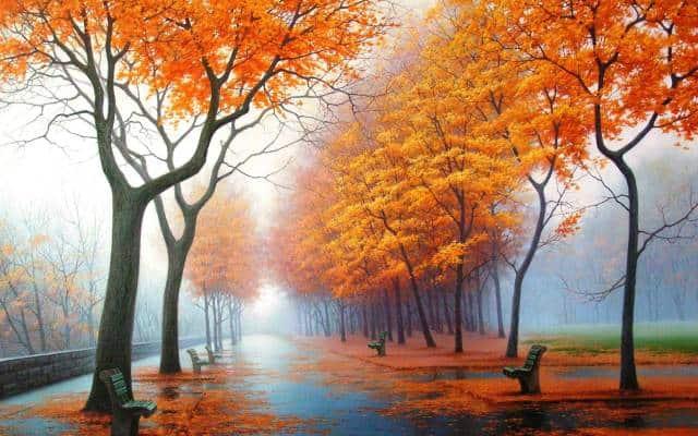 a misty park in autumn