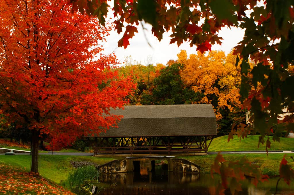 autumn leaves and a covered bridge